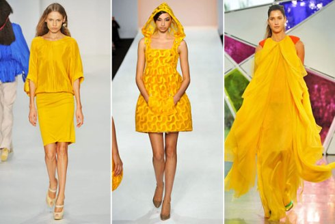 20081204_yellowdress_560x3751